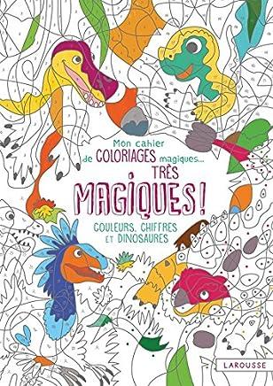 Coloriage Code Dinosaure.Amazon Fr Coloriage Dinosaure Broche Livres