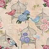 Stitch & Sparkle Melody Garden-Birds in The Garden 100% Cotton Fabric 44' Wide, Quilt Crafts Cut by The Yard