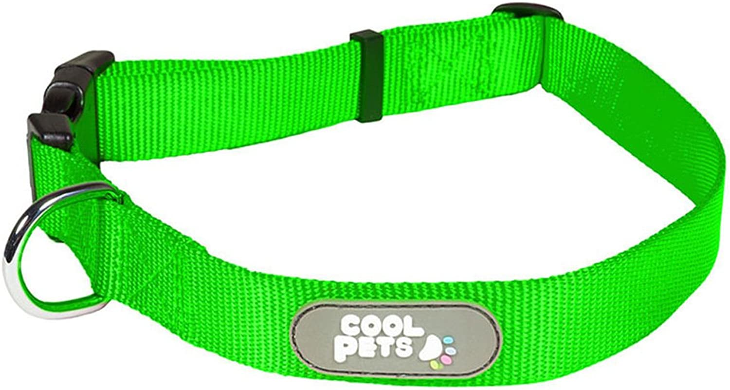 Dog Lead Chain Collar Leash Durable and Easy to Clean with Small Medium and Large Iron Teddy golden Hair Pet Supplies (color   Green, Size   L)