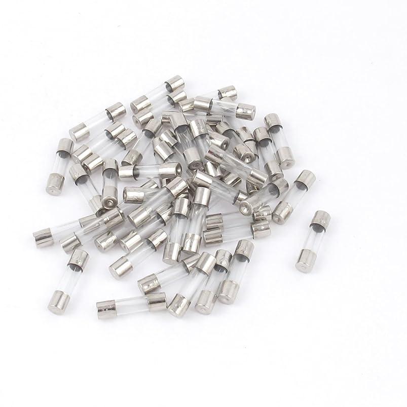 無視できるする必要がある縞模様のuxcell ミニ管ヒューズ チューブヒューズ 50本 5x20mm ガラス 金属 250V 2A クイックブロー