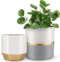 Plant Pots, BABIRO White Ceramic Pots for Plants with Drainage Hole, 6.1/5.1 Inch Indoor Planter Pots, Flower Pots Indoor ...