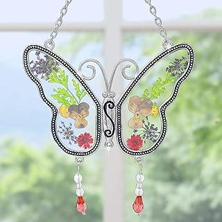 pressed butterflies
