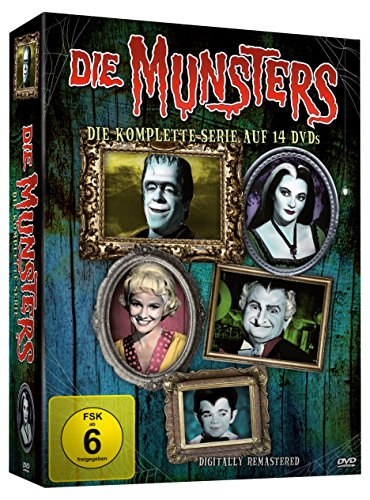 Die komplette Serie (14 DVDs)