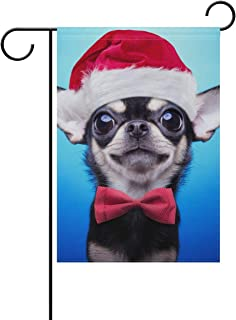 Best chihuahua christmas yard decorations Reviews