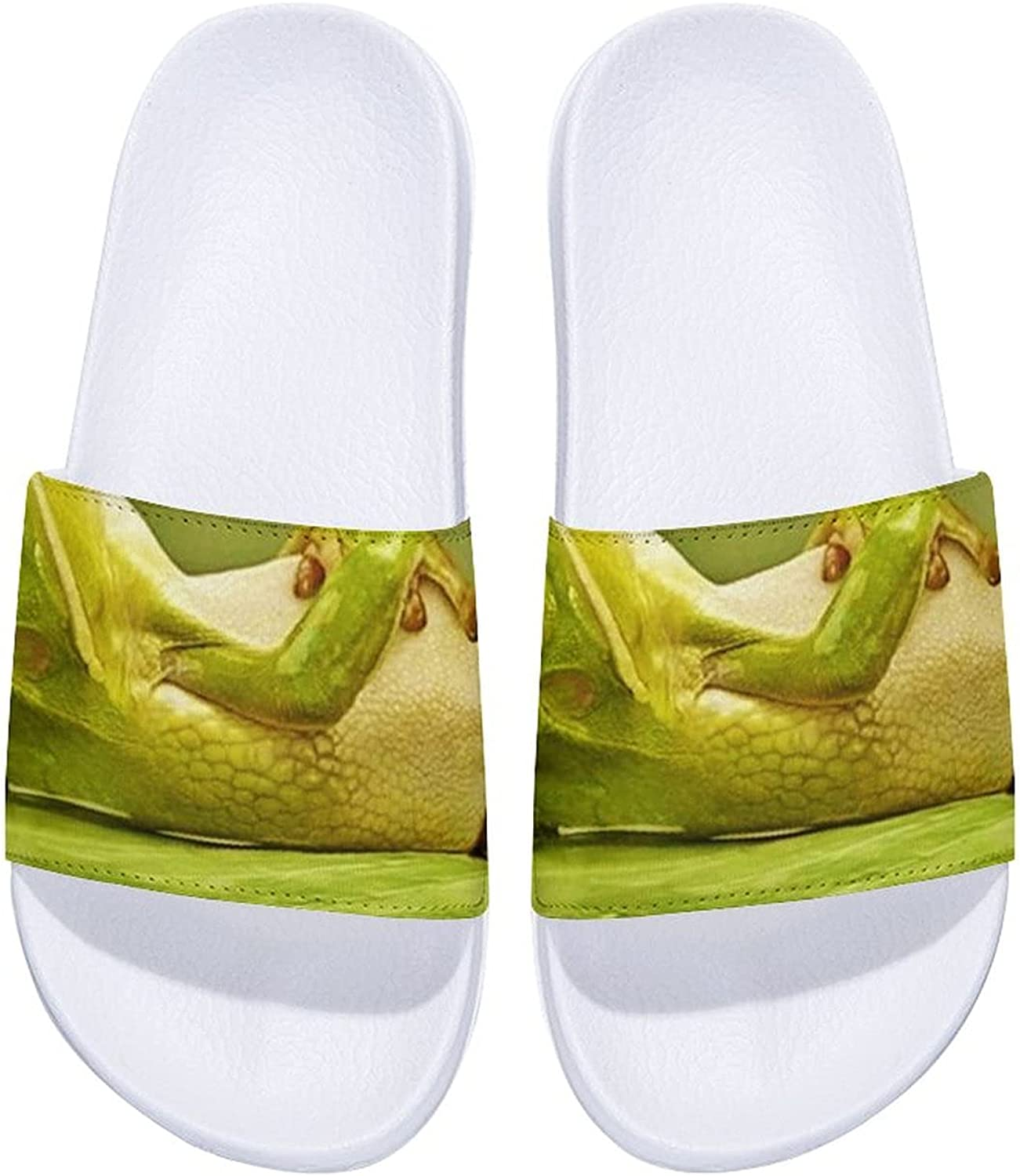 Funny Frog-1 Men's and Fort Worth Mall Women's Outd Slide Sandals Comfort Chicago Mall Indoor