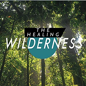The Healing Wilderness