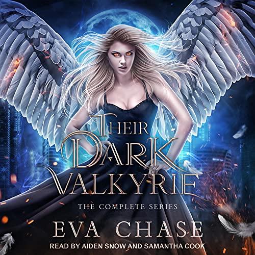 Their Dark Valkyrie cover art