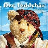 Der Teddybär 2020 - Broschürenkalender - Wandkalender - Format 30 x 30 cm: Bären sind doch bessere Menschen - DuMont Kalenderverlag