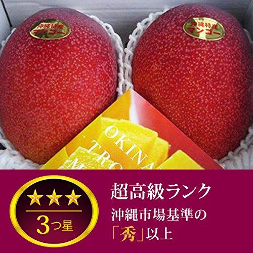 超高級ランク 沖縄県産完熟アップルマンゴー(2〜3個 1kg)
