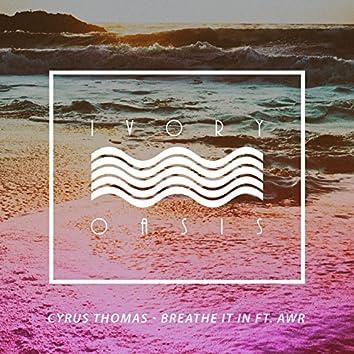 Breathe It In (feat. AWR) - Single