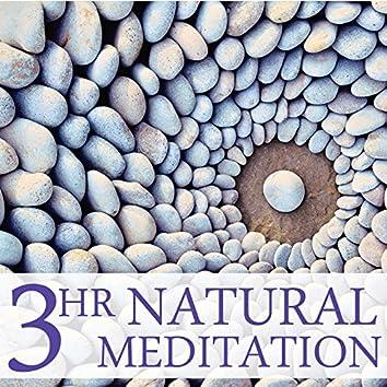 3 Hour Natural Meditation: Relaxing Music for Meditation & Yoga
