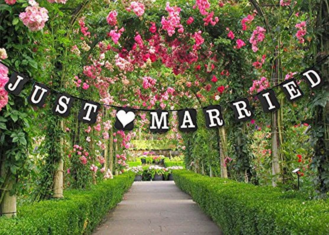 QTMY Vintage JUST MARRIED Wedding Banner Photo Props Bridal Party Decoration 3m