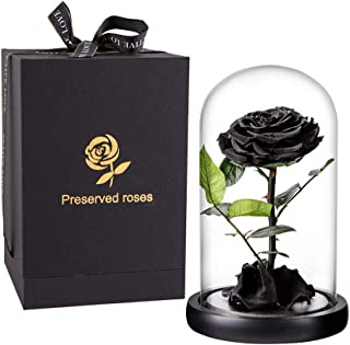 Preserved Rose Black Roses Handmade Preserved Flower Real Rose in Glass Dome, Preserved Roses Never Withered Romantic Gifts for Female, Valentine's Day, Mother's Day, Birthday (9 inch, Black)