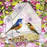 Nature Bird Feeder Finches