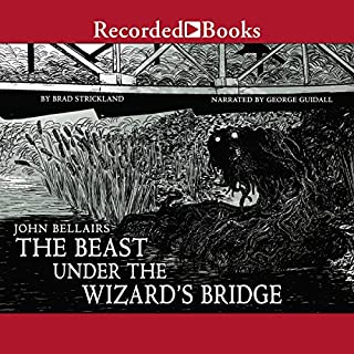 The Beast Under the Wizard's Bridge audiobook cover art