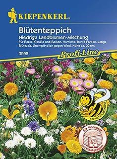 Kiepenkerl Blütenteppich Niedrige Landblumen-Mischung