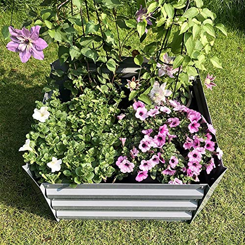 Z-DYQ Raised Garden Bed Galvanized Planter, Metal Raised Garden Bed Kit, Elevated Flower Boxes, Square Steel Planter, Vegetable Flower Bed Kit Bottomless, 23.6'x 23.6' x 11.8',Gray (Color : Gray)