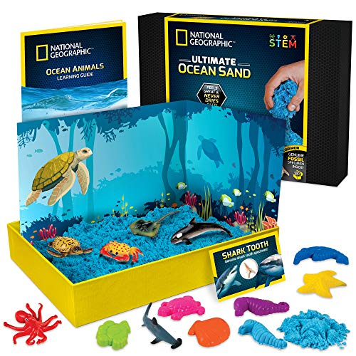 NATIONAL GEOGRAPHIC Ocean Play Arena - 2 ...