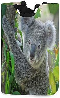 Panier à linge mignon Koala sur arbre Grand panier à linge sale pliable Grand sac de rangement en tissu Paniers de rangeme...