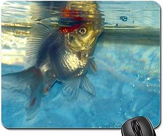 Mouse Pad - Ryukin Goldfish Fish White Aquarium Aquatic