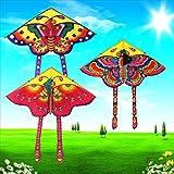 Youlin Juguetes Cometa Mariposa Color Cometa Cometas al Aire Libre para niños