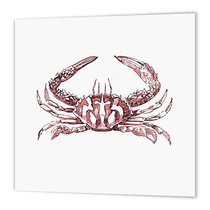3dRose ht_164894_3 Red Crab Drawing-Nautical Beach Sea Ocean Theme Vintage Art-Iron on Heat Transfer Paper for White Material, 10 by 10-Inch