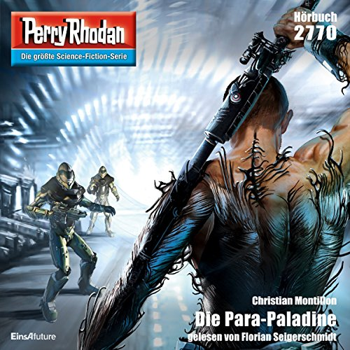 Die Para-Paladine Titelbild