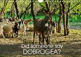 Did someone say Dobrogea? (Wall Calendar 2020 DIN A4 Landscape): A Donkey's Tale of 12 tail wagging landscapes from the land between the waters, ... calendar, 14 pages ) (Calvendo Nature)