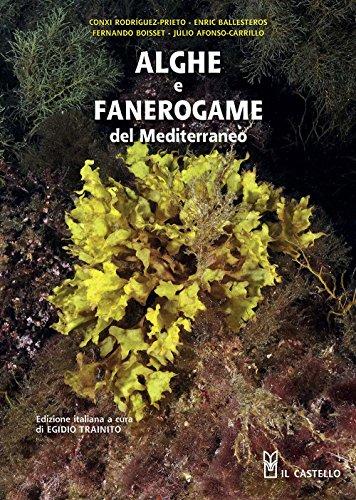 Alghe e fanerogame del Mediterraneo. Ediz. illustrata