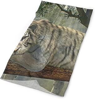 Headband Tiger Animal Jungle Rainforest Exotic World Outdoor Scarf Mask Neck Gaiter Head Wrap Sweatband Sports Headwear