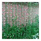HJHQQ-CZYHG Plantum, Rete da Arrampicata Verde per Piante, Giardino, Nylon, Grado, Verdure, Fagioli (Color : Grün)