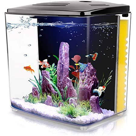 FREESEA 1.2 Gallon Betta Aquarium Fish Tank with LED Light and Filter Pump
