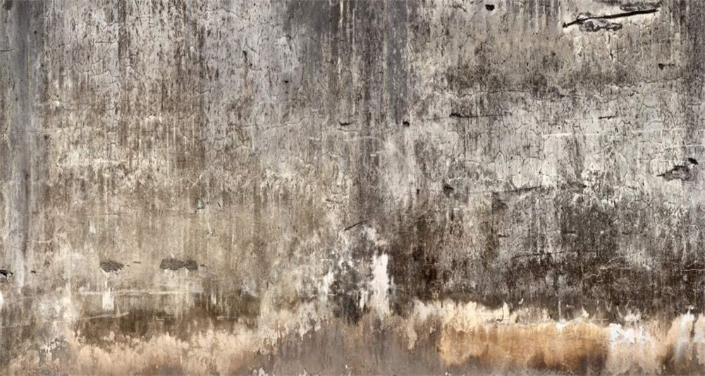10x5ft Grunge Wall Background Countryside Moldy Weathered Lime Wall Portrait Photography Backdrop Celebrity Stars Photos Family Company Retro Shoot Photo Studio Props Poster Banner