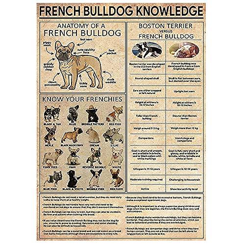 French Bulldog Knowledge Wall Art Poster, Knowledge Poster, Dog Art Print, Home Decor, Dog Knowledge, French Bulldog Knowledge Poster Great Gift On Occasions, (NO Frame) M079-19
