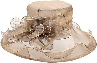 Kentucky Derby Hats for Women, Ladies Organza Church Kentucky Derby Fascinator Bridal Tea Party Wedding Hat