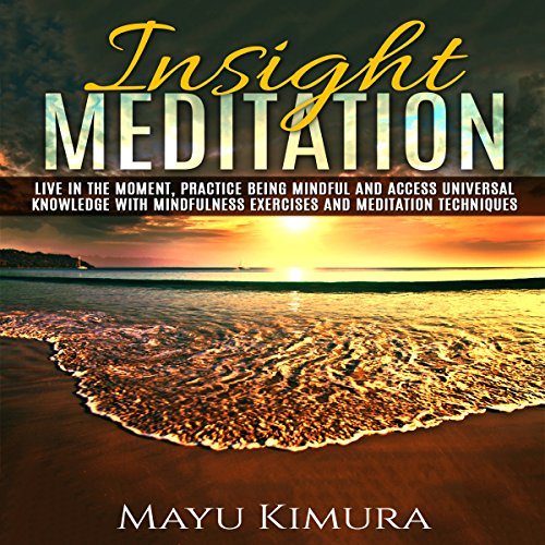 Insight Meditation audiobook cover art