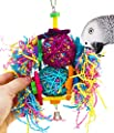 Bonka Bird Toys Duo Tri Foraging Star Toy Parrot cage Cages Shredder Cockatiel Conure African Grey