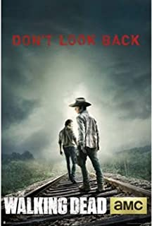 Old Glory Trends International The Walking Dead Don't Look Back Wall Poster 22.375