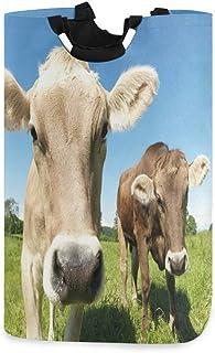 COFEIYISI Grand Organiser Paniers pour Vêtements Stockage,Gros Plan Douce Photo de Vaches au pré avec Ciel Ouvert,Pliable ...
