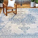 Home Dynamix Nicole Miller Patio Country Azalea Indoor/Outdoor Area Rug 5'2'x7'2', Traditional Medallion Gray/Blue