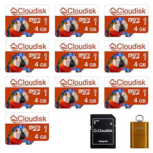 Cloudisk 10Pack 4GB Micro SD-Speicherkarte Class4 mit MicroSD Adapter + Kartenleser (Parrot-Prime)