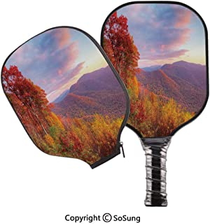 3D Print Graphite Pickleball Paddle Set,Sunrise with Stunning Sky Colors in Autumn Falls at South Western Village Scenery Pop Carbon Fiber Large Lightweight Top Professional Power Outdoor Rackets for