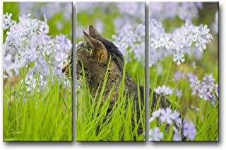 So Crazy Art 3 Panel Wall Art Painting Cat in The Grass with White Flower Prints On Canvas The Picture Animal Pictures Oil for Home Modern Decoration Print Decor for Bedroom