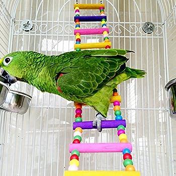 Jouet Oiseaux - Echelles/Balan?oires pour Perroquet Jouet Oiseau Cage Installation (8 ¨¦chelles)