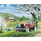 Diy pintura al óleo por números para adultos |Cuadro DIY Pintura por números Spring Tour 60x75cm Diy Pintura acrílica por números Kit para adultos Modern Wall Art Picture Art-50x65cm Diy Frame