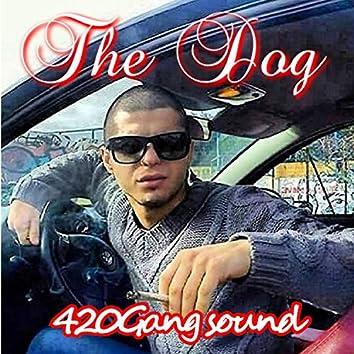420gang Sound