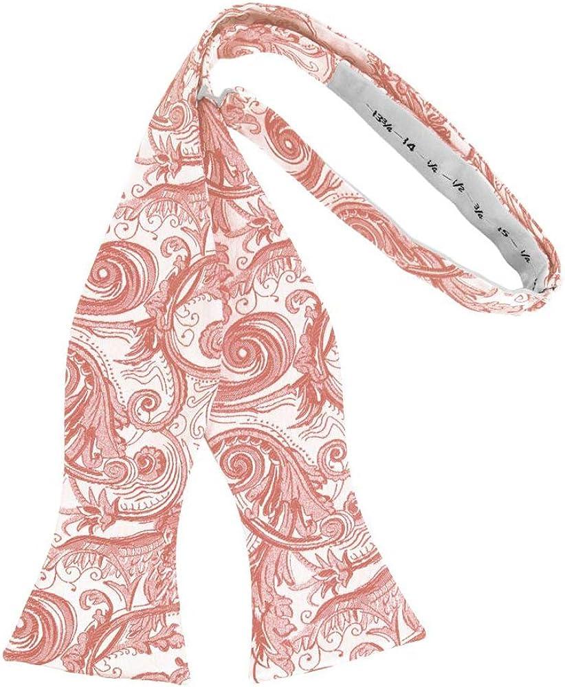 Men's Paisley Self Tie Bow Tie