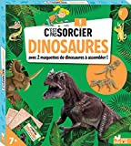 C'est pas sorcier les dinosaures - boîte avec accessoires: Avec 2 maquettes de dinosaures à...