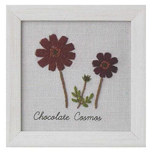 LECIEN (ルシアン) 刺しゅうキット 青木和子12か月の植物手帖 -チョコレートコスモス Chocolate Cosmos- 約11.7×11.7cm 0000542011