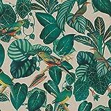 Hans-Textil-Shop Stoff Meterware Tropischer Wald Calathea